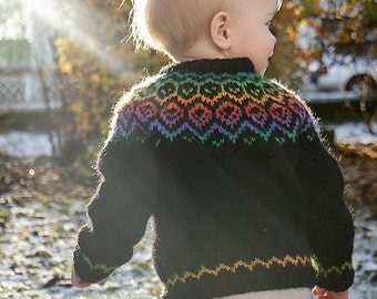 Rainbow Lopi Sweater
