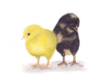 Baby Chickens Print of Watercolor,chicken art,chicks,animal,bird,babies, poultry,hens,nursery art,chicken lover, chicken collector