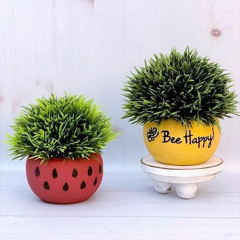Mini Plants  Watermelon Tiered Tray Decor  Bee Happy image 0