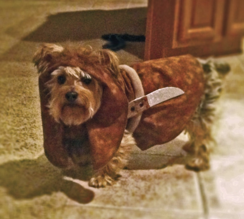 8560c9e047f Ewok dog costume - Made to order only