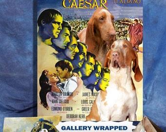 Bracco Italiano Art Julius Caesar Vintage Movie Poster by Nobility Dogs