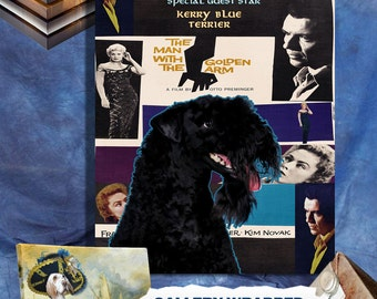 Kerry Blue Terrier Vintage Poster Canvas Print  - The Man with the Golden Arm Movie Poster  Perfect CHRISTMAS Gift Sale 30 off FREE Shipping