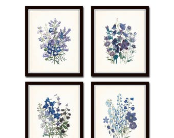 Wildflower Print Set No. 4, Botanical Prints, Giclee, Art Prints, Antique Botanical Prints, Wall Art, Botanical Art, Vintage Botanical Print