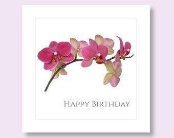 Orchid Birthday Card Etsy