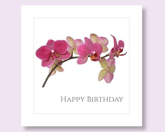 Flower Birthday Flower Photo Card Orchid Card Flower Card Etsy