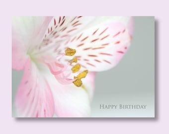 Flower Birthday Photo Card, Alstromeria Card, Flower Card, Floral Birthday Card, Pink Birthday Card