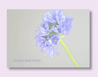 Flower Birthday Photo Card, Blue Flower Card, Floral Birthday Card, Birthday Card, Greetings Card, Photo Cards
