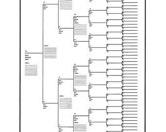 5 pack of large family tree charts bracket style 24 x etsy