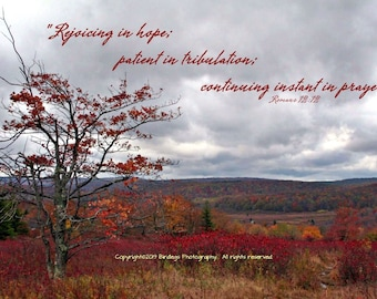 Dolly Sods West Virginia with Bible Verse