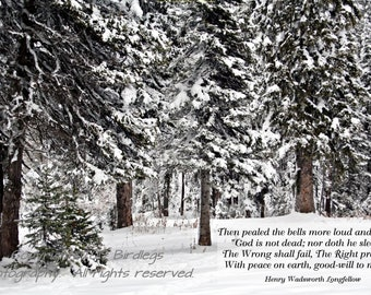 Snowy Trees in the Idaho Mountains - Christmas, Christmas Verse, Longfellow Quote, I Heard the Bells, Peace On Earth, Emigration Canyon