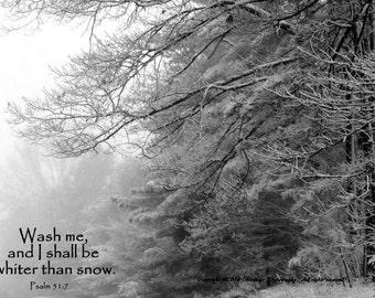 Snow  Verse - Virginia