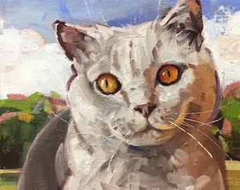 """Juno"""" Original oil painting on canvas 8"""" x 8""""/Chance Lee/pet portrait/cat"""