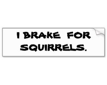 Break for squirrels sticker