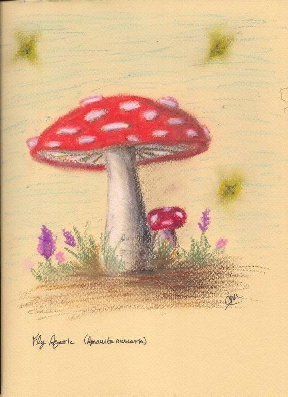 Fine Art Print Amanita Muscaria