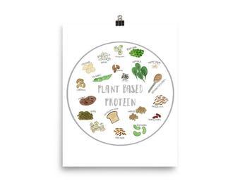 Vegan / Vegetarian Plant Based Protein Poster / Chart