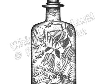 Porter's Gin Botanicals Vintage Bottle: Porter's Gin Limited Edition Print