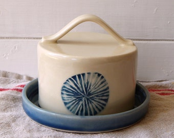 Butter dish, sand dollar collection