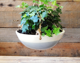 Wave hanging planter