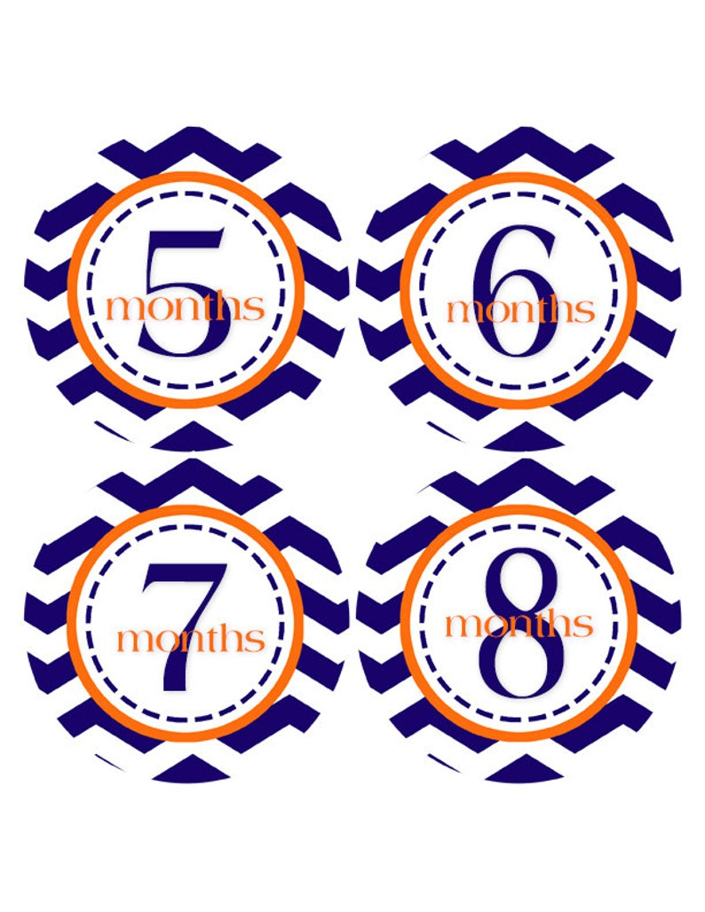 Baby Month Stickers 1-12 months Baby Stickers Baby Milestones Monthly Baby Stickers Bodysuit 405 FREE GIFT Baby Boy Stickers