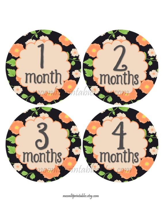 FREE GIFT 221 Monthly Age Sticker Baby Month Stickers Baby Girl Month Stickers Monthly Baby Stickers Orange Bodysuit Stickers