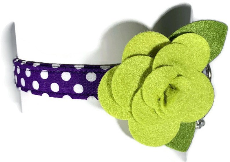 V.I.P. Dog Olive's Choice  Purple and Green Rose-Polka image 0