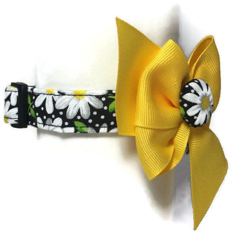 Black and Yellow Daisy Floral Dog Collar size Extra Small image 0