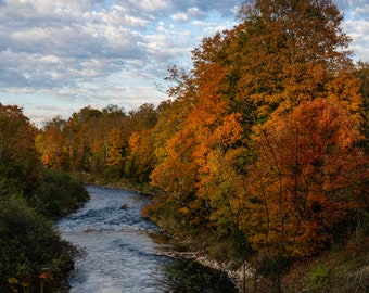 Fall on the Boardman River