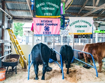 Grand Champion of the County Fair