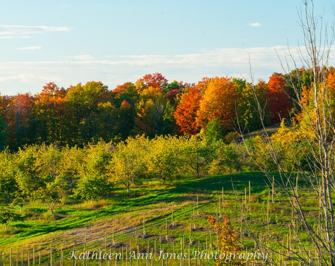 Featured listing image: Fall Colors on Old Mission Peninsula
