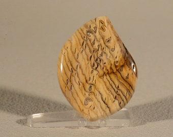 Hells Canyon Herringbone Petrified Wood Cabochon. Handcrafted USA. Natural Gemstone.