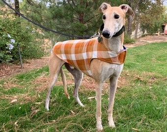 Greyhound Coat | XL Dog Jacket | Big Dog Coat | Pumpkin, Gold, and White Flannel Buffalo Plaid with Royal Blue Fleece Lining