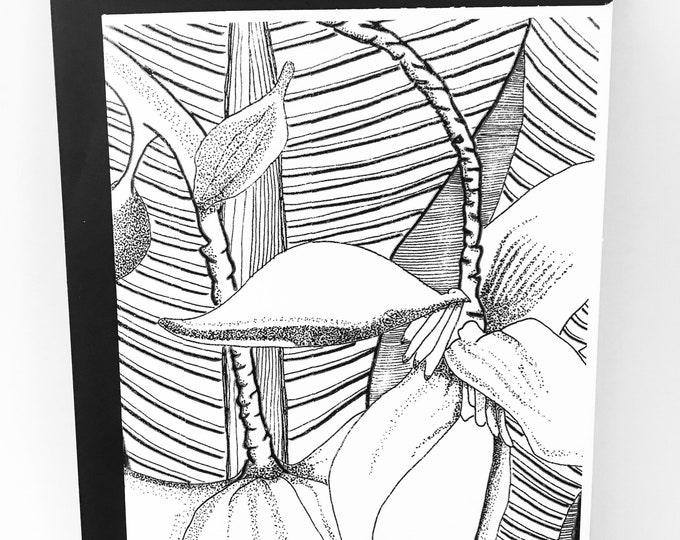 Featured listing image: Banana Blossom Notecard- White