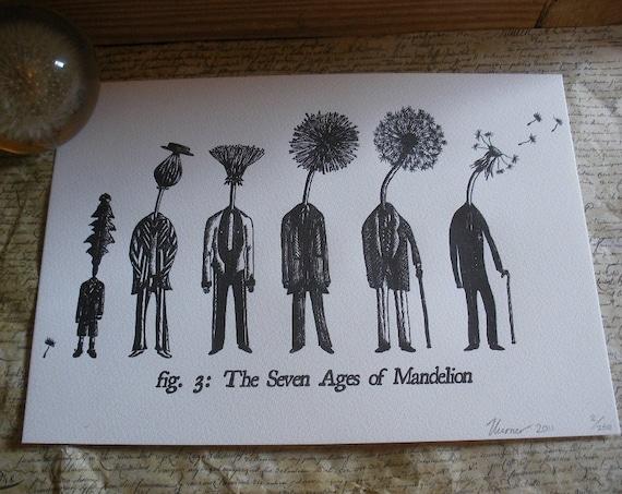 Letterpress Print- The Seven Ages of Mandelion
