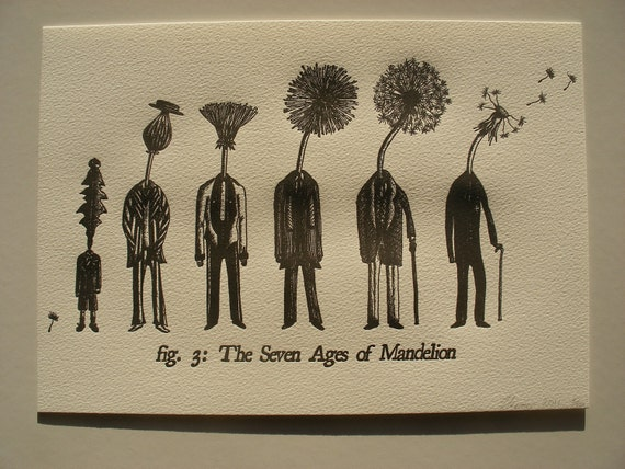 A4 Letterpress Print- The Seven Ages of Mandelion - Dandelion Letterpress Print- Unique Literary Gift