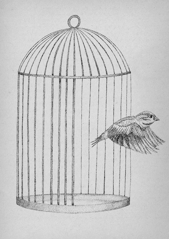 Free At Last- Sparrow art print by Jon Turner- pen and ink birdcage artwork- A4  8x10
