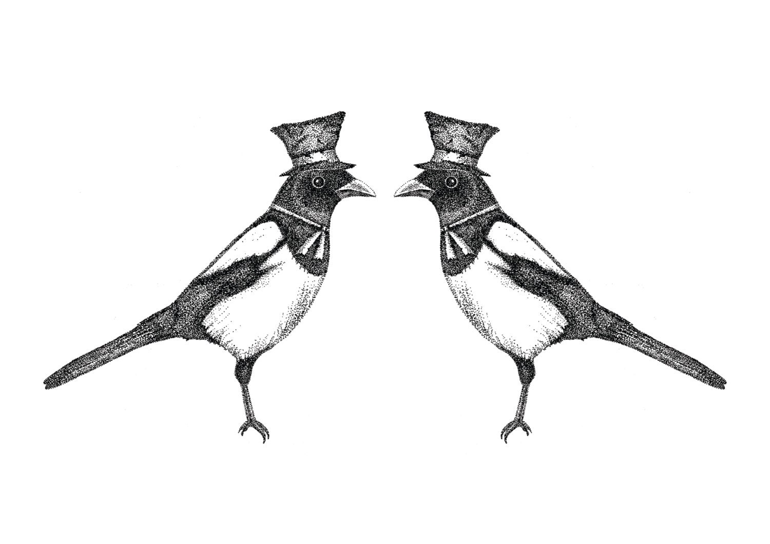 Two for Joy- magpies art print by Jon Turner- pen and ink Victoriana