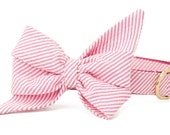 Crew LaLa™ Fuchsia Seersucker Belle Bow Dog Collar
