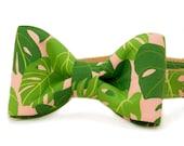 Crew LaLa™ Palm Springs Bow Tie Dog Collar