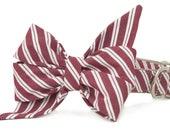 Crew LaLa™ Crimson Stripe Belle Bow Dog Collar