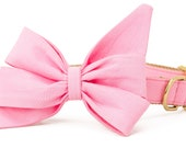 Crew LaLa™ Carnation Belle Bow Collar
