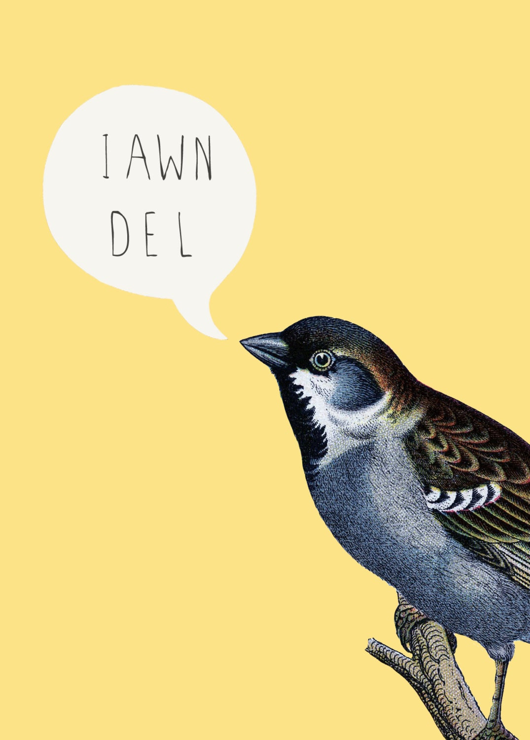 SALE - SEL - A5 Notebook Iawn Del! Welsh Hello Yellow Bird