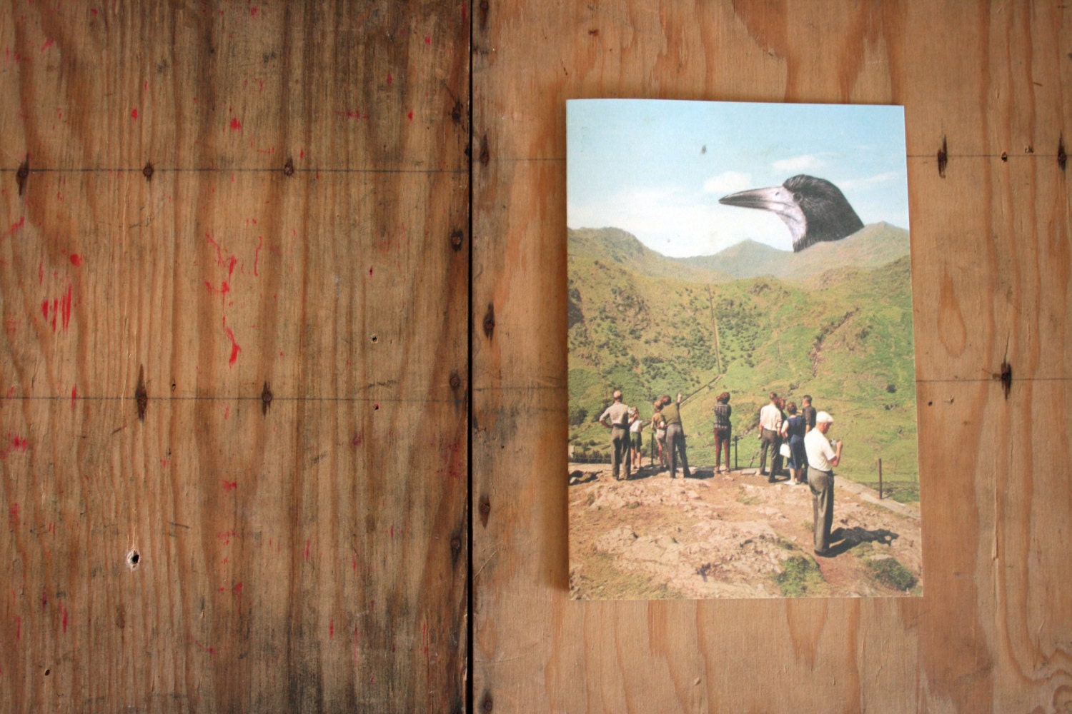 Sale Sel Tourists Mountains Giant Bird Eco Friendly Art Greeting
