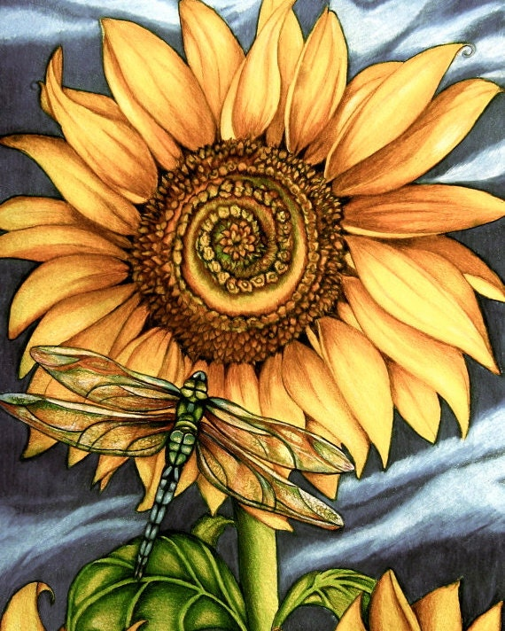 sunflower art print by ClaudiaTremblay