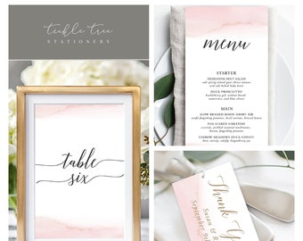 Day Of Packages/Table Decor - Modern and Subtle Golds & Pinks (Style 13844)