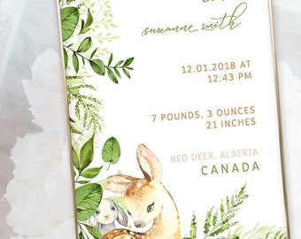 Birth Poster (Baby Stats) - Woodland Friends (W00016)