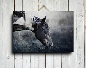 Black and White Painted Horse - Horse art - Horse decor - Horse photography - Animal photography - Paint horse art - Horse canvas