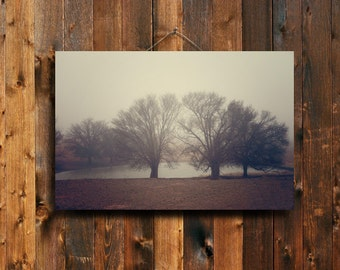 "The Fog - 20x30""  canvas print - trees in fog - fog photography - tree photography - tree decor - tree art - brown decor"