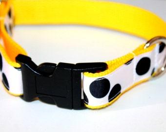 Polka Dot Dog Collar and Leash Black and Yellow Dog Collar Large Dog Collar Yellow Pet Collar Black and White Collar Small Dog