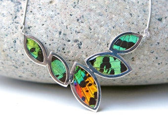 Real Butterfly Necklace Pendant Green Sunset Moth Nature Jewelry Gift Present Taxidermy Unique For Her Anniversary Birthday