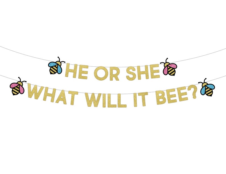 Boy Or Girl Banner What Will It Bee Banner Gender Reveal Banner Gender Reveal Party Bee Theme Baby Shower What Will It Be